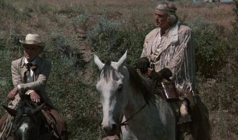 Brando.horse